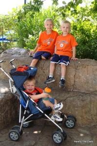 3 boys zoo